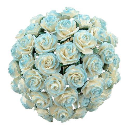 2 tonowe jasno-turkusowe różyczki otwarte