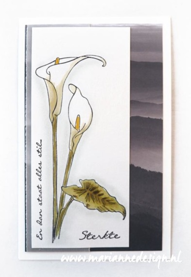 Stempel - Marianne Design - Tiny's border: callas - kalie