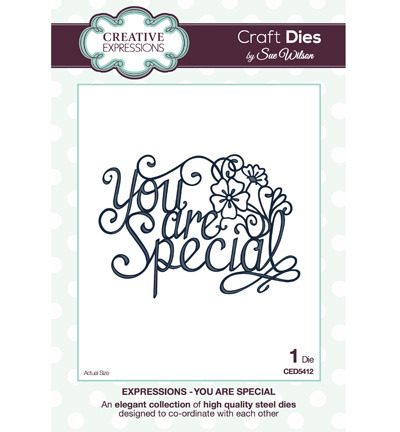 Wykrojnik - Creative Expressions - You are Special CED5412