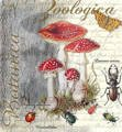 Serwetka 33x33cm - Fly Agaric and Beetle muchomory owady